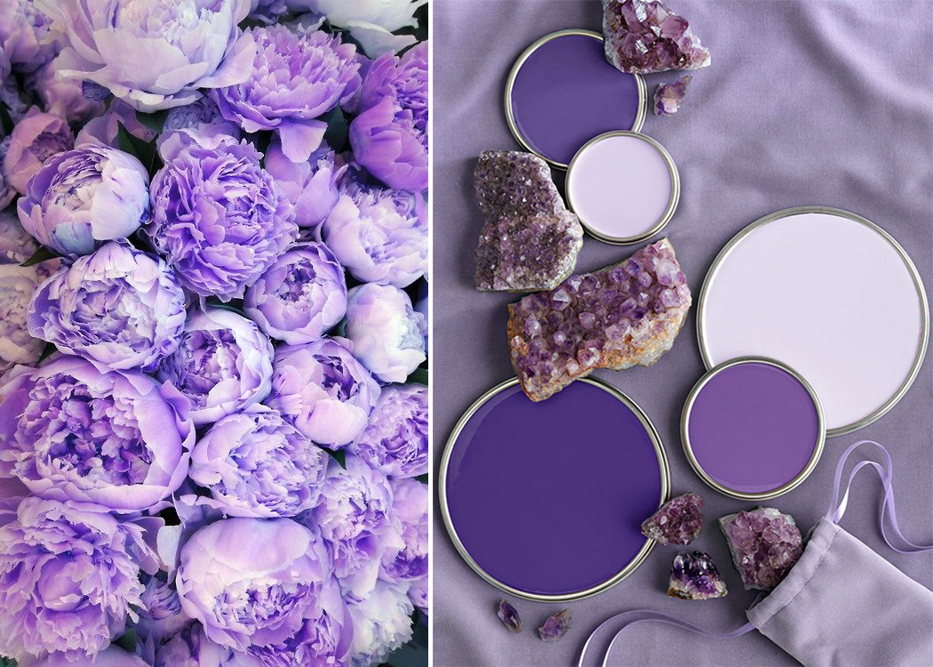petite and so what - pantone ultra violet 3